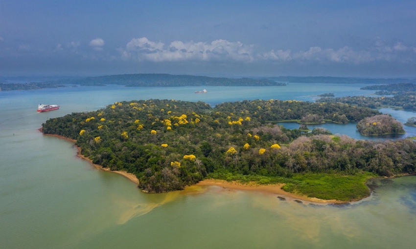 Panama Canal begins transition to carbon neutrality