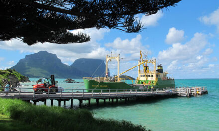 ADF steps in after floods disrupt sea freight to Lord Howe Island