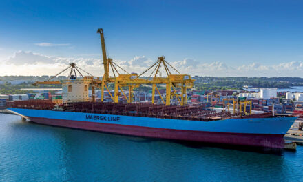 Botany container trade: Huge volumes continue