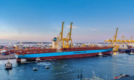 Botany breaks record with longest containership