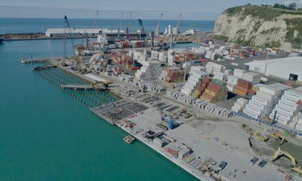 Trade diversity mitigates pandemic effects at NZ port