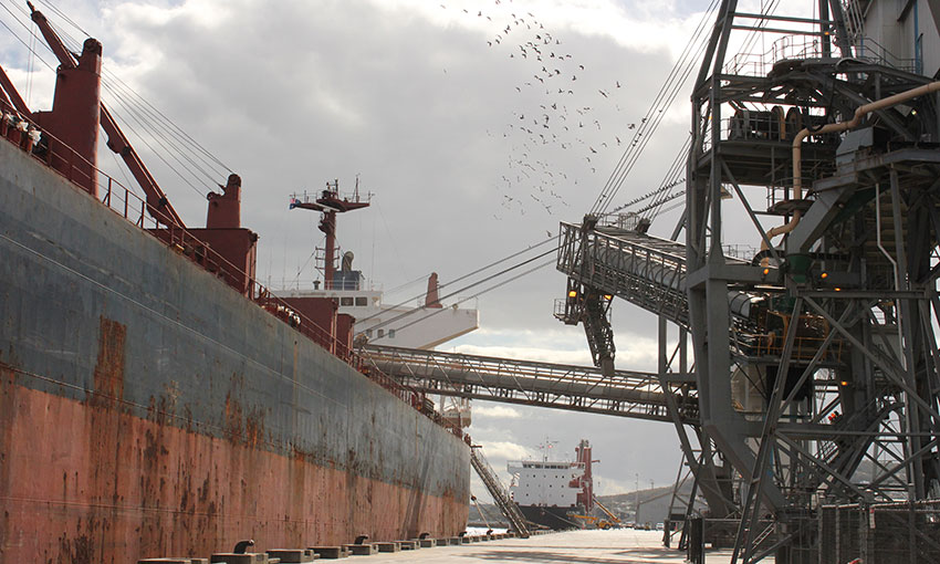 Fumigation opens trade doors