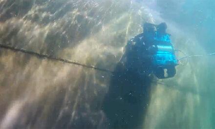 ROVs deployed for marine biosecurity surveillance