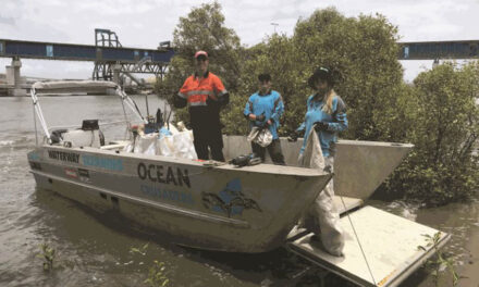 1.2 tonnes of litter picked up from port precinct