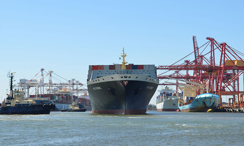 Ports Victoria board announced