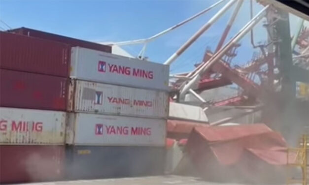 Containership causes gantry crane collapse