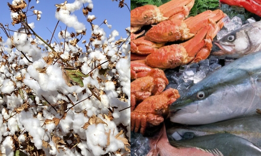 Seafood and cotton industries get a leg up from government
