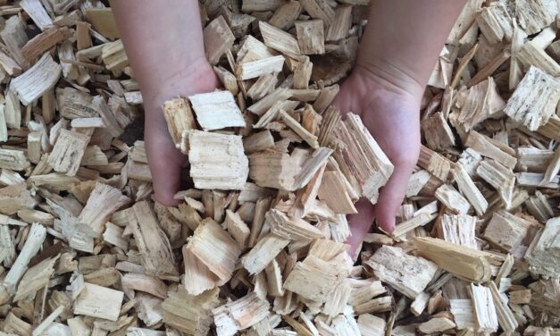 Opposition to plans to export woodchips from Newcastle