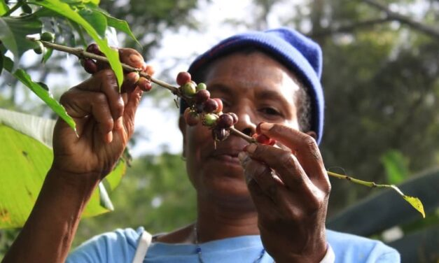 Australia-Pacific co-operation to grow agricultural trade in the region